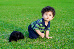Baby and puppy. Cute baby boy playing with little black chow puppy royalty free stock photo