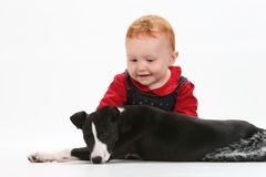 Baby and puppy Royalty Free Stock Image