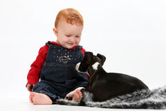 Baby and puppy Stock Images