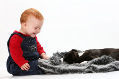 Baby and puppy Stock Photo