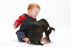 Baby and puppy Royalty Free Stock Photo