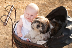 Baby and puppy in vintage pram. Baby girl and puppy are sitting in a vintage pram royalty free stock image