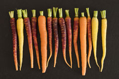 Baby Rainbow Carrots Stock Images
