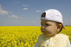 Baby in the rape field Stock Photos