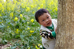 Baby in the rape field Royalty Free Stock Photography
