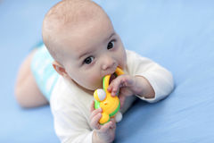 Baby with rattle Royalty Free Stock Photography