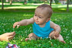 Baby reaching for a flower Royalty Free Stock Images