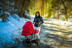 Baby in red stroller in forest countryside with mother. Relax in nature in Winter sunny day royalty free stock photo