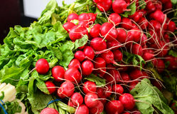 Baby red turnips for sale Stock Photography