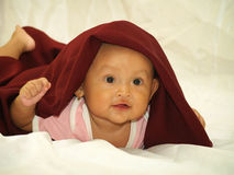 Baby in Red Veil. Happy face asian smilling baby in red veil royalty free stock photos