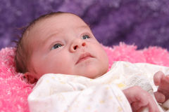 Baby relaxe. 8 day old baby girl relaxes for portrait Royalty Free Stock Photography