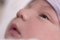 Baby resting. Newborn baby boy resting stock images