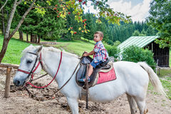 Beautiful baby rides a horse Royalty Free Stock Image