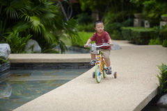 Baby riding bicycle Stock Image