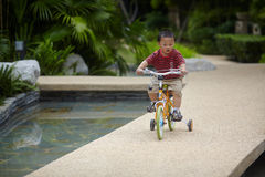 Baby riding bicycle Stock Photography