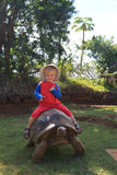 Baby riding giant turtle. In Mauritius island Royalty Free Stock Photo