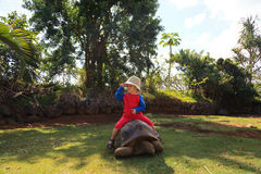 Baby riding giant turtle Stock Image