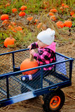 Baby riding in pumpkin patch wagon Royalty Free Stock Photography