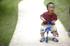 Baby riding tricycle Royalty Free Stock Image