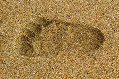 Baby right footprints Royalty Free Stock Image