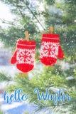 Baby rode vuisthandschoenen op de boom van de de winterpijnboom royalty-vrije stock foto's
