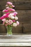Baby roses Stock Photo