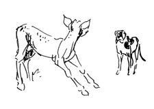 Baby-Rotwild und kleiner Hund stock abbildung