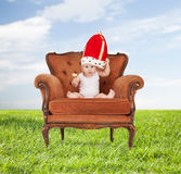 Baby in royal hat with lollipop sitting on chair Royalty Free Stock Image