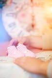 Baby roze buiten Royalty-vrije Stock Foto's