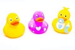 Baby rubber ducks toy for bath. Funny different baby rubber duck for bath studio quality white background Stock Image