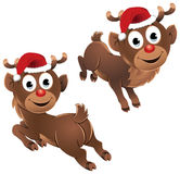 Baby Rudolph The Reindeer Jumping. Baby Rudolf - the reindeer jumping & enjoying on Christmas, wearing a Santa hat and he is looking very happy Stock Photography