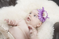 Baby on a rug Stock Photography