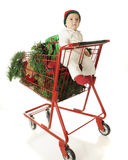 Baby's Basket Full of Christmas royalty free stock photo
