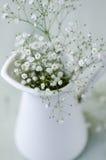 Baby's breath flowers arrangement Stock Image
