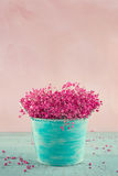 Baby's breath flowers in a blue vase Stock Photo