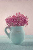 Baby's breath flowers Stock Image