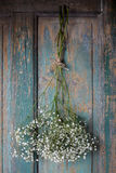 Baby's breath (gypsophilia paniculata) on wooden background Stock Photos