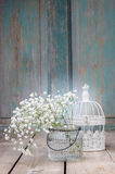 Baby's breath (gypsophilia paniculata) on wooden background Stock Image