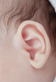 Baby's ear. Healthy ear and baby hair with part of face close-up Stock Image
