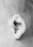 Baby's ear Royalty Free Stock Photos