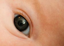 Baby's Eye Royalty Free Stock Image