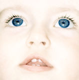 Baby`s face Royalty Free Stock Images