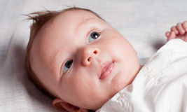 Baby's face Royalty Free Stock Image