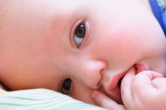 Baby's face looks at camera Royalty Free Stock Photo