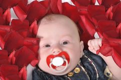 baby's face with the red dummy Stock Photo