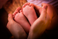 Baby`s feet. In mother`s hands royalty free stock photography
