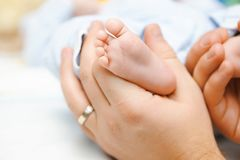 Baby's feet Stock Image