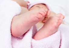 Baby's feet. A close-up of newborn baby girl feet on soft pink cotton towel Stock Photography