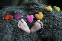 Baby's Feet Covered With Black Wool Textile stock photo