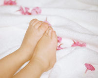 Baby`s feet and flowers. Baby`s feet with flowers Royalty Free Stock Image